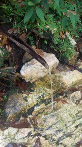 Trilha Cachoeira Segredo