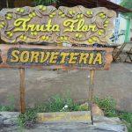 Sorveteria-Fruta-Flor