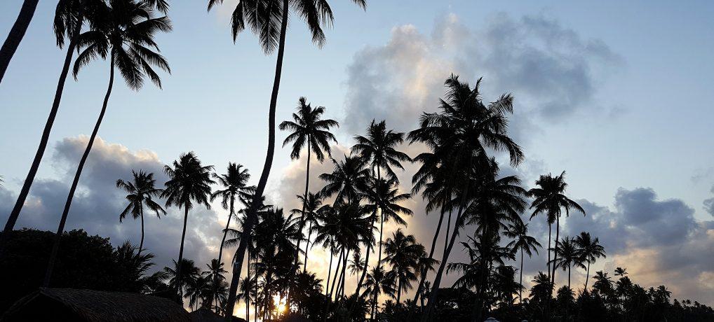 Praia dos Carneiros – Paraíso em Tamandaré